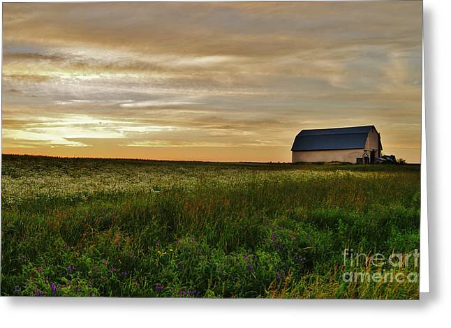 Sunset In Aroostook County Greeting Card