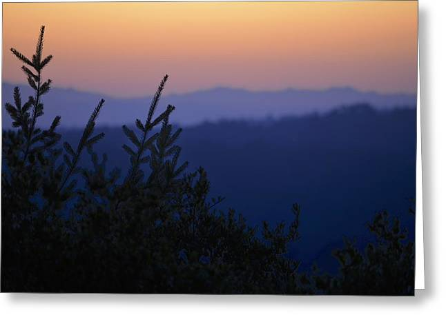 Sunset In California Greeting Card by Alex King