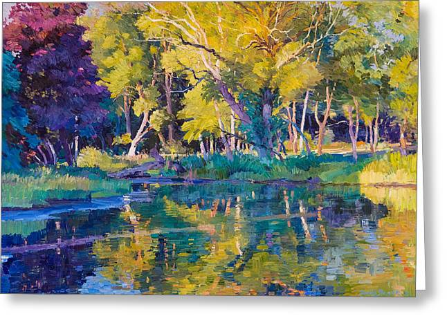Sunset In Hinsdale Park Greeting Card