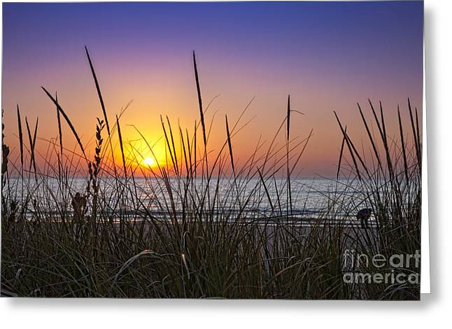 Sunset In Ludington Greeting Card