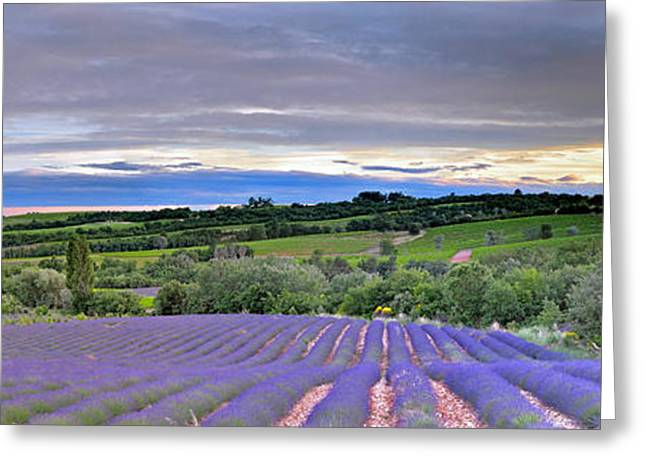 Sunset In Provence Greeting Card