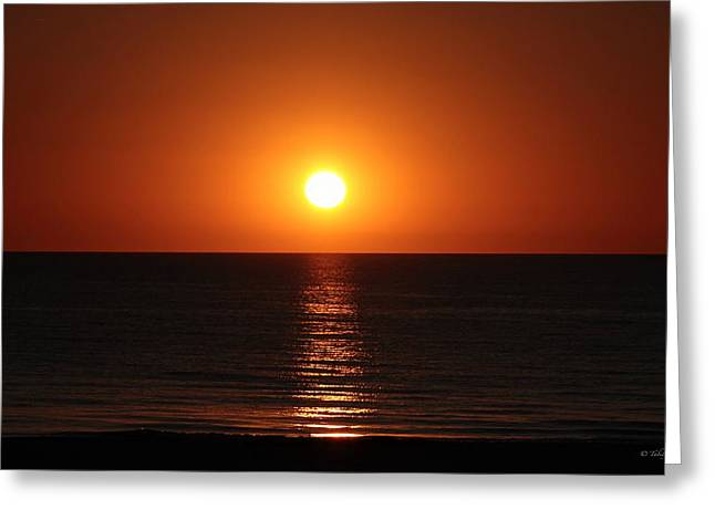 Sunset In St. Pete Greeting Card by Tabitha Williams