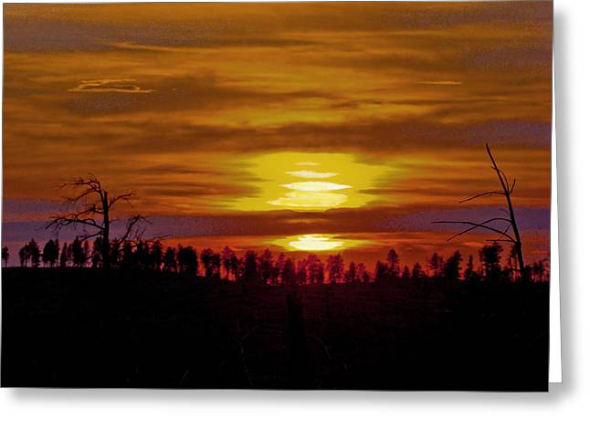 Greeting Card featuring the photograph Sunset In The Black Hills 2 by Cathy Anderson