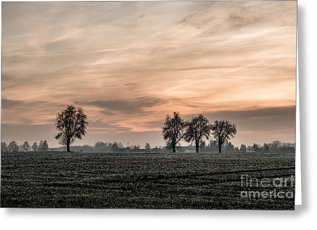 Sunset In The Country - Orange Greeting Card by Hannes Cmarits