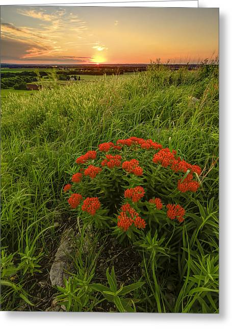Sunset In The Flint Hills Greeting Card