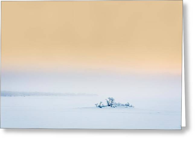 Sunset In The Frozen Landscape, Cold Greeting Card