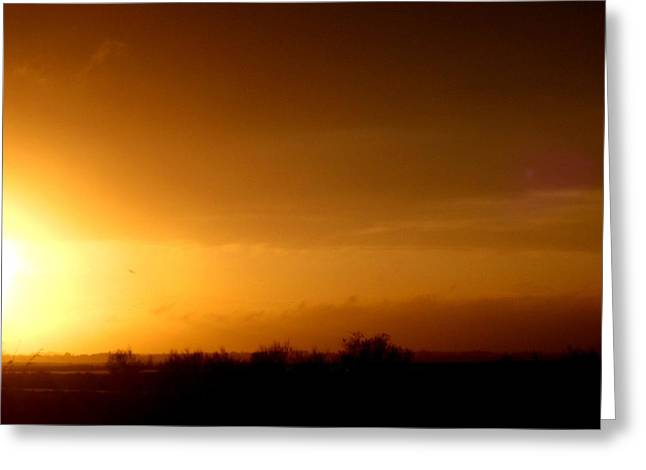 Sunset In The South Of France Greeting Card