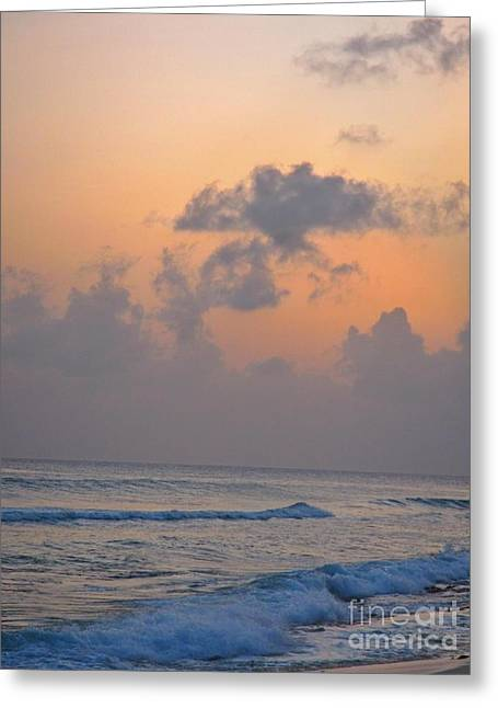 Sunset In The Tropics Greeting Card by John Malone