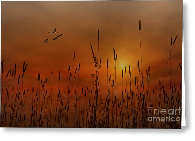 Sunset In The Valley Greeting Card by Tom York Images