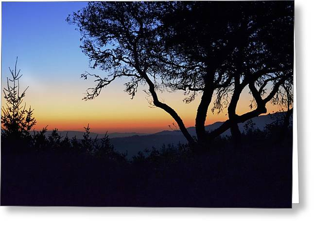 Sunset In Woodside  Greeting Card by Alex King