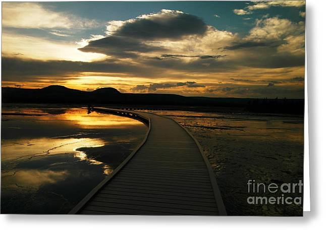 Sunset In Yellow Stone Greeting Card by Jeff Swan