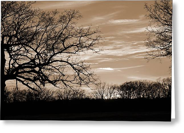 Sunset Is Sepia  Greeting Card
