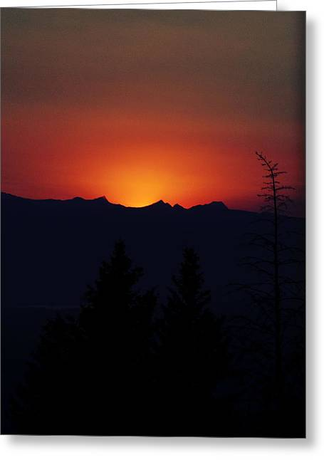 Sunset Greeting Card by Janie Johnson