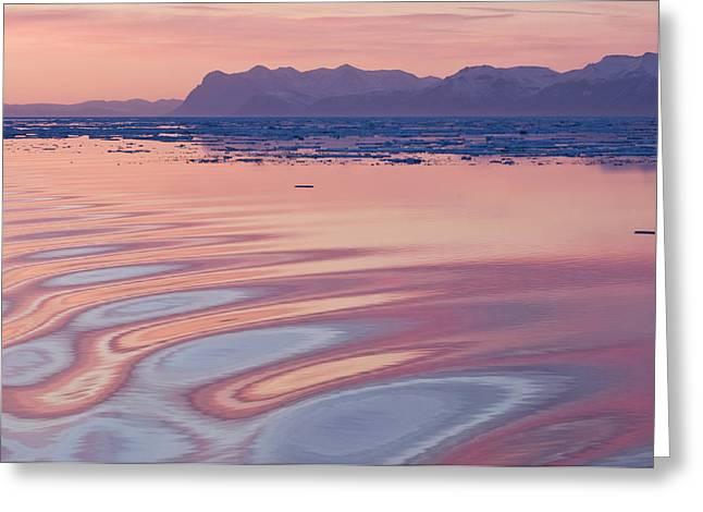 Sunset, Kong Oscar Fjord, East Coast Greeting Card by Daisy Gilardini