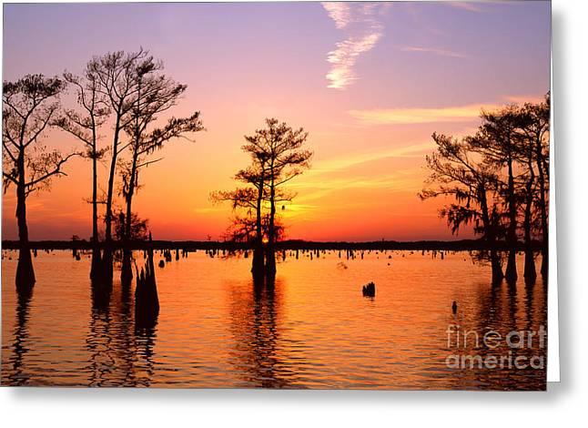 Sunset Lake In Louisiana Greeting Card