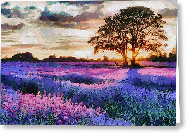 Sunset Lavender Field Greeting Card