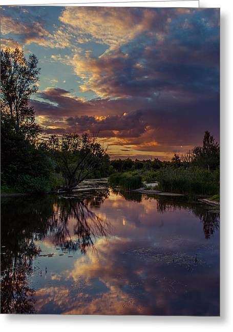 Greeting Card featuring the photograph Sunset Mirror by Dmytro Korol