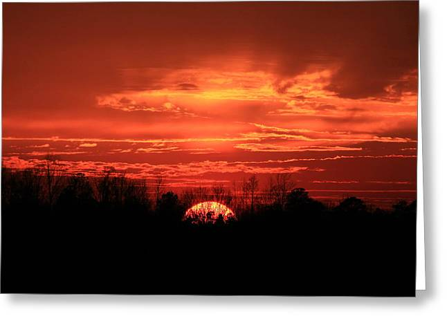 Sunset On Fire  Greeting Card by Reid Callaway
