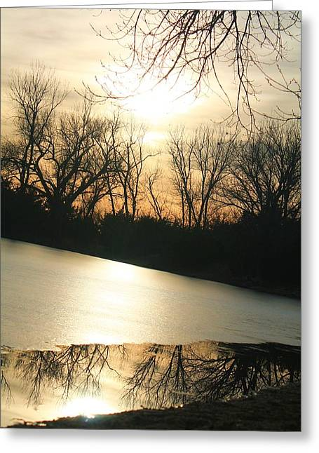 Sunset On Frozen Lake Greeting Card by Alicia Knust