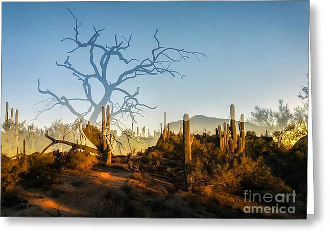 Sunset On Latigo Greeting Card