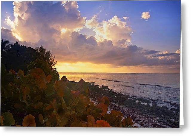 Sunset On Little Cayman Greeting Card by Stephen Anderson