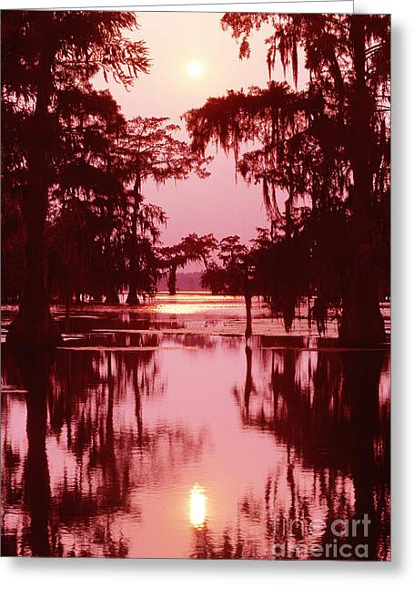 Greeting Card featuring the photograph Sunset On The Bayou Atchafalaya Basin Louisiana by Dave Welling