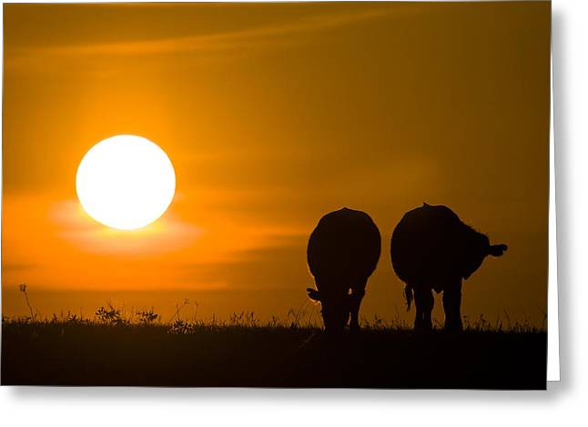 Greeting Card featuring the photograph Sunset On The Flint Hills by Scott Bean