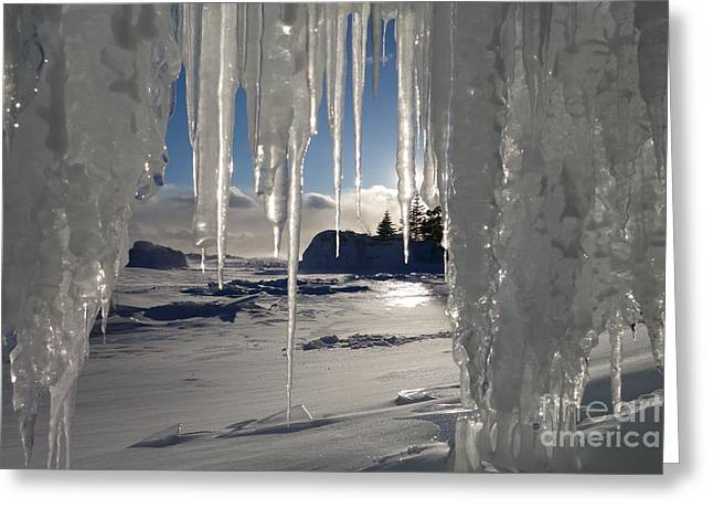 Sunset On The Icicles Greeting Card by Sandra Updyke