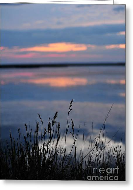 Sunset On The Lake Greeting Card by Birches Photography