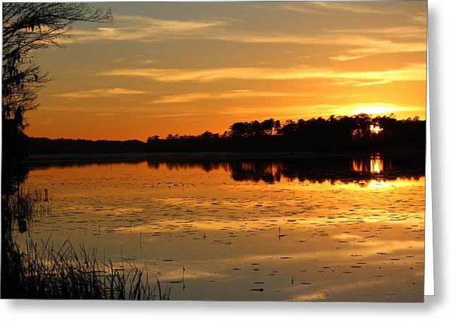 Sunset On The Lake Greeting Card by Cynthia Guinn