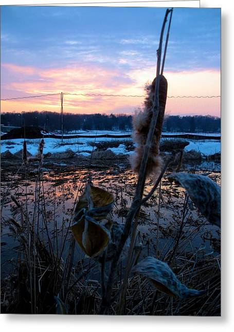 Greeting Card featuring the photograph Sunset On The Pond by Zafer Gurel