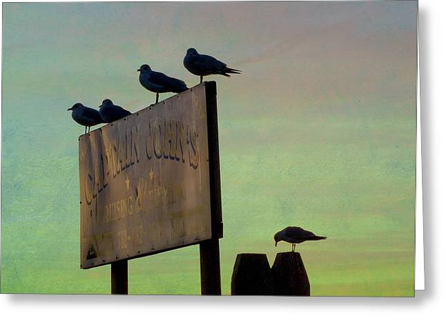 Sunset On The Sign Greeting Card