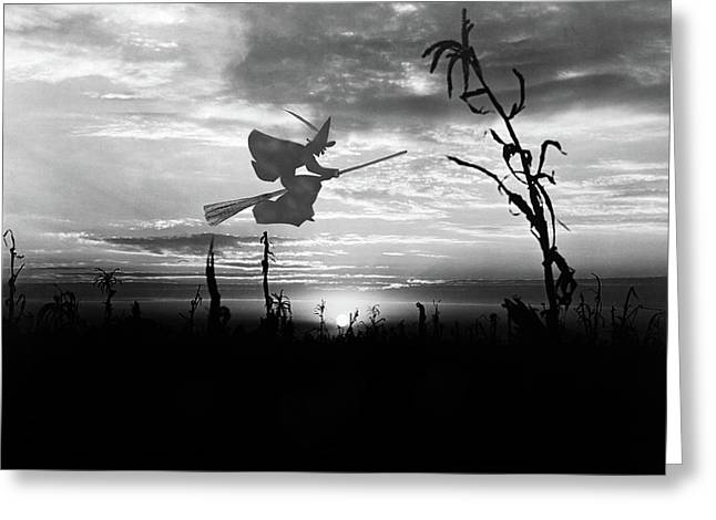 Sunset Over Cornfield With Silhouette Greeting Card