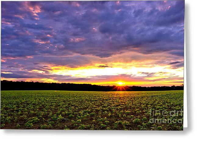 Sunset Over Farmland Greeting Card