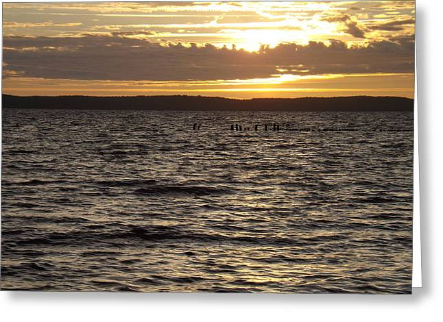 Sunset Over Lake Cazaux Greeting Card by Tony Serzin