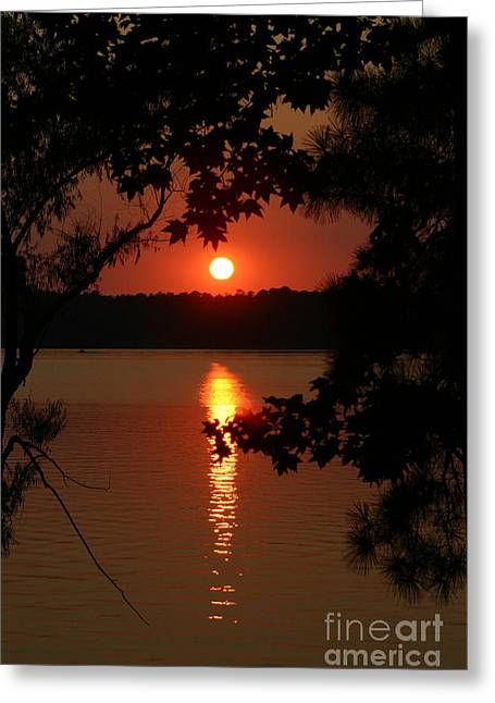 Sunset Over Lake Greeting Card by D Wallace
