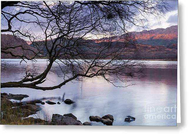 Sunset Over Lake Dinas Greeting Card by Trevor Chriss
