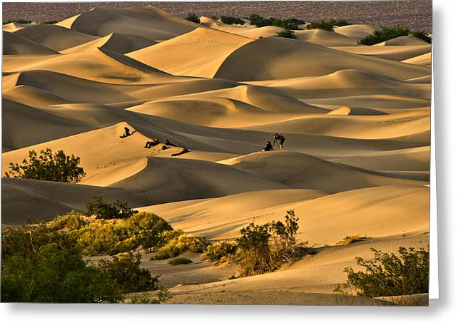 Sunset Over Mesquite Flat Dunes Greeting Card