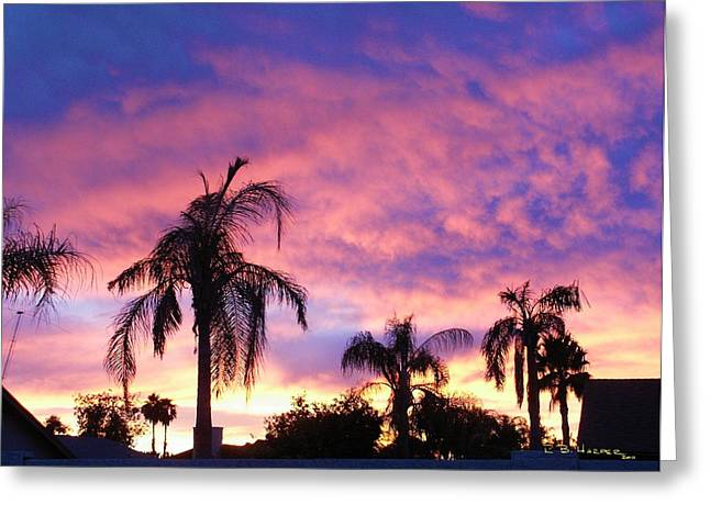 Sunset Over Palms Greeting Card