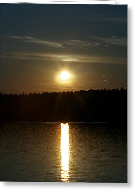 Greeting Card featuring the photograph Sunset Over Pickerel River Sun 91 by G L Sarti