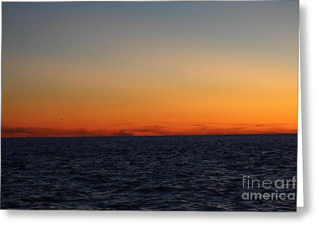Greeting Card featuring the photograph Sunset Over Point Lookout by John Telfer