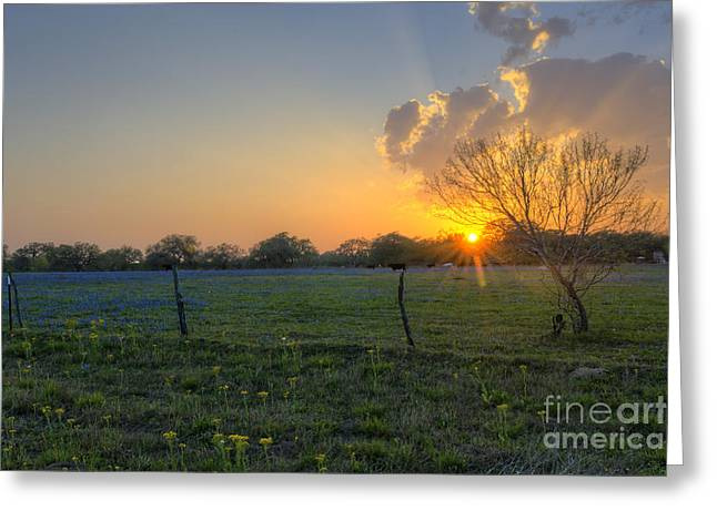 Sunset Over Poteet Texas Greeting Card