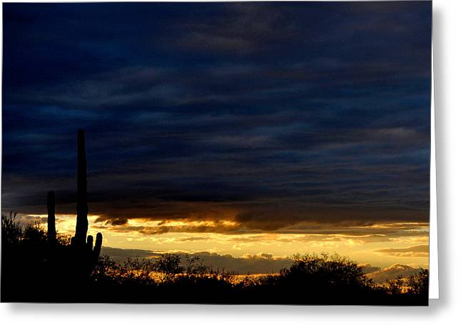 Sunset Over Sonoran Desert Greeting Card by Jon Van Gilder