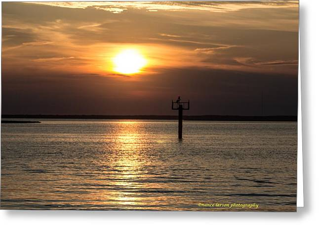 Sunset Over The Bay Greeting Card by Nance Larson