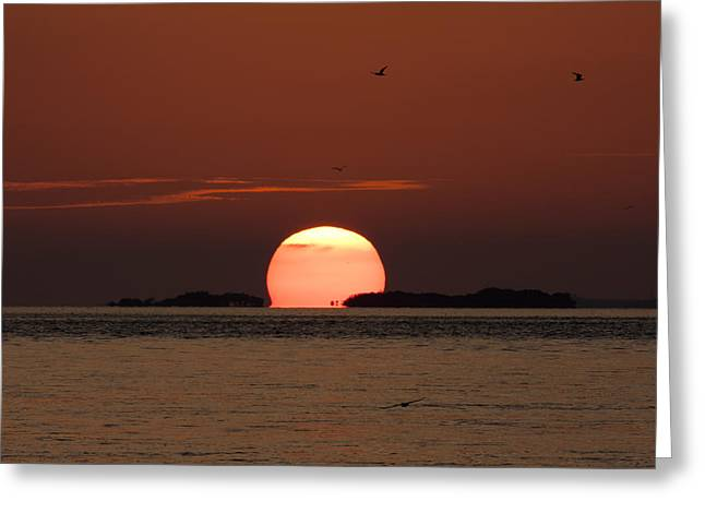 Sunset Over The Keys Greeting Card by Adam Romanowicz