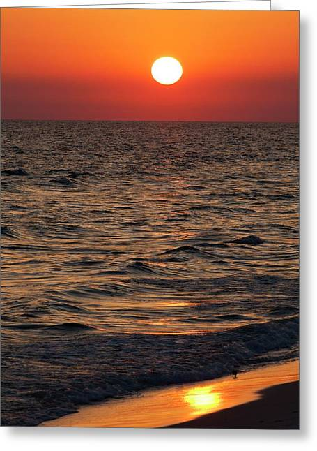 Sunset Over The Ocean And A Beach Greeting Card by Jim Edds