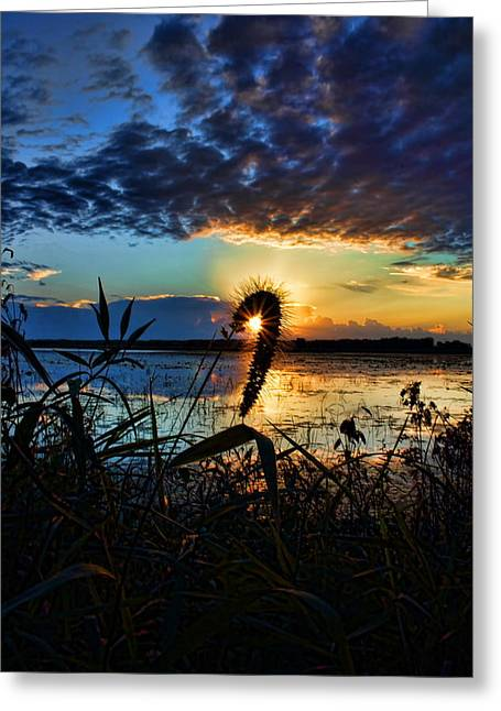 Sunset Over The Refuge Greeting Card