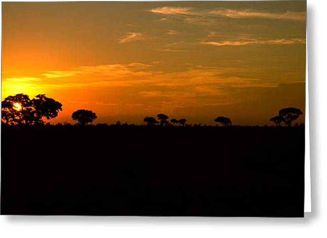 Sunset Over The Savannah Plains, Kruger Greeting Card by Panoramic Images