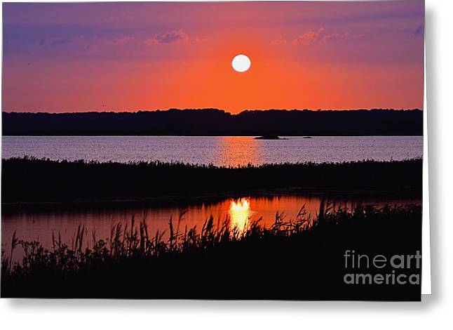 Sunset Over The Wetlands Greeting Card