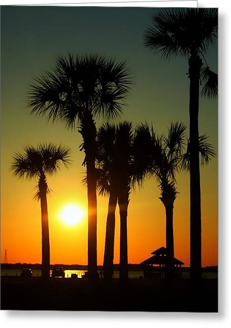 Sunset Over West Bay Greeting Card by Debra Forand